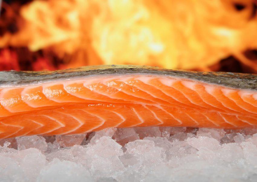 A hal is illeszkedik a ketogén étrendhez