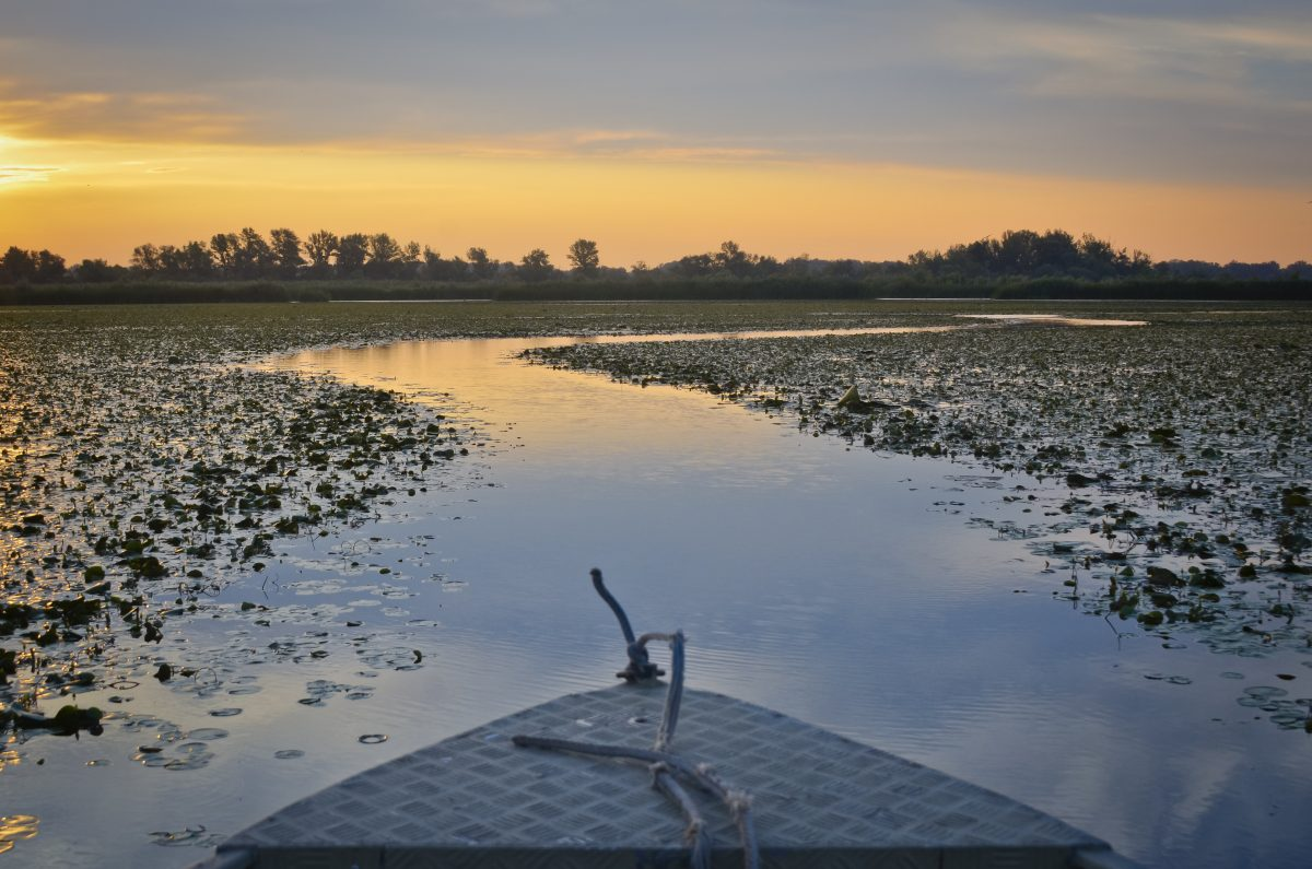 Hungary, the Land of Waters and Wonders: Lake Tisza
