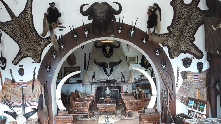 Afrika Múzeum és állatkert