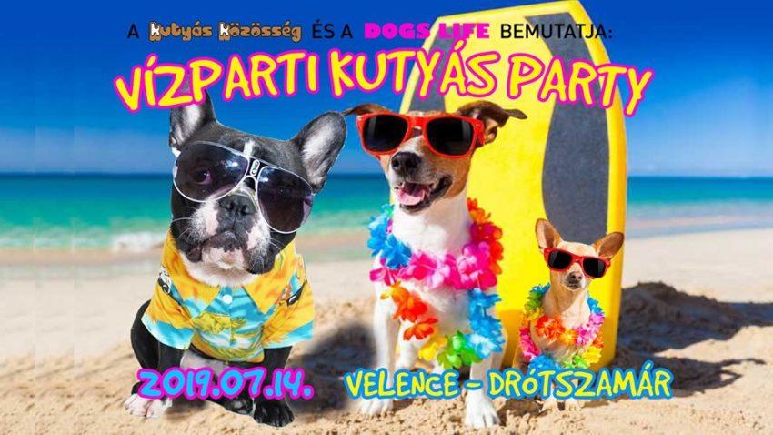 Vízparty Kutyás Party a Drótszamárban (2019. július 14., Velence)