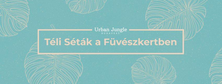 Téli programok Budapesten 2020: Séták a Füvészkertben – Január 12.