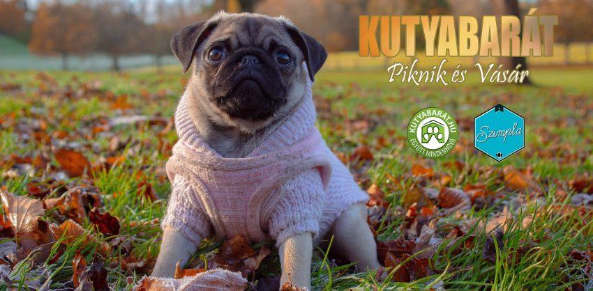 Hétvégi szabadtéri programok Budapesen: DOGtober - Kutyabarát őszi vásár
