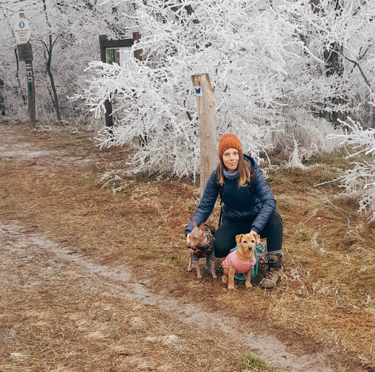 Kutyás kirándulás: Felfedeztük a Duna-Ipoly Nemzeti Park erdei tanösvényét
