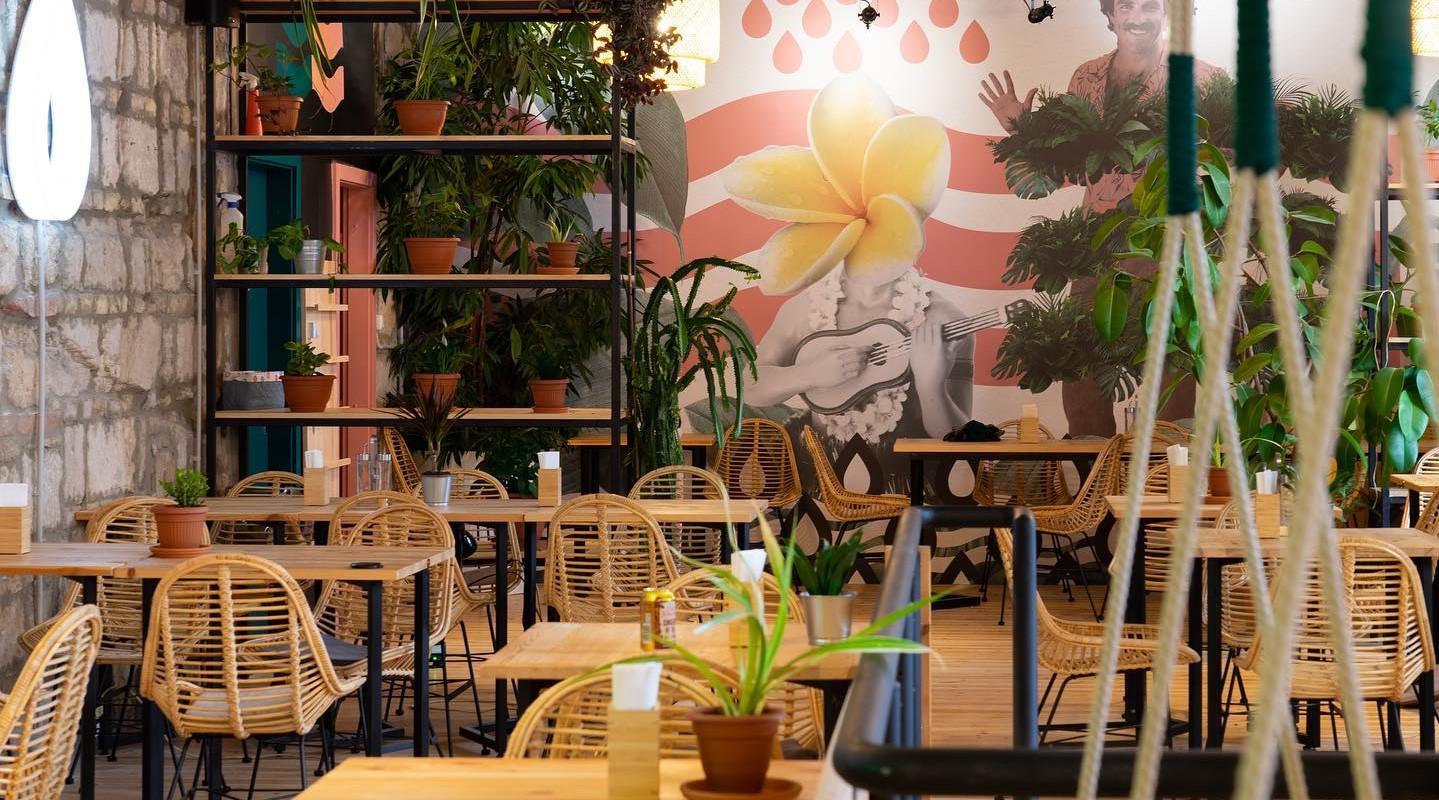 Új egységet nyitott az ONO Poké Bowl Bar az V. kerületben