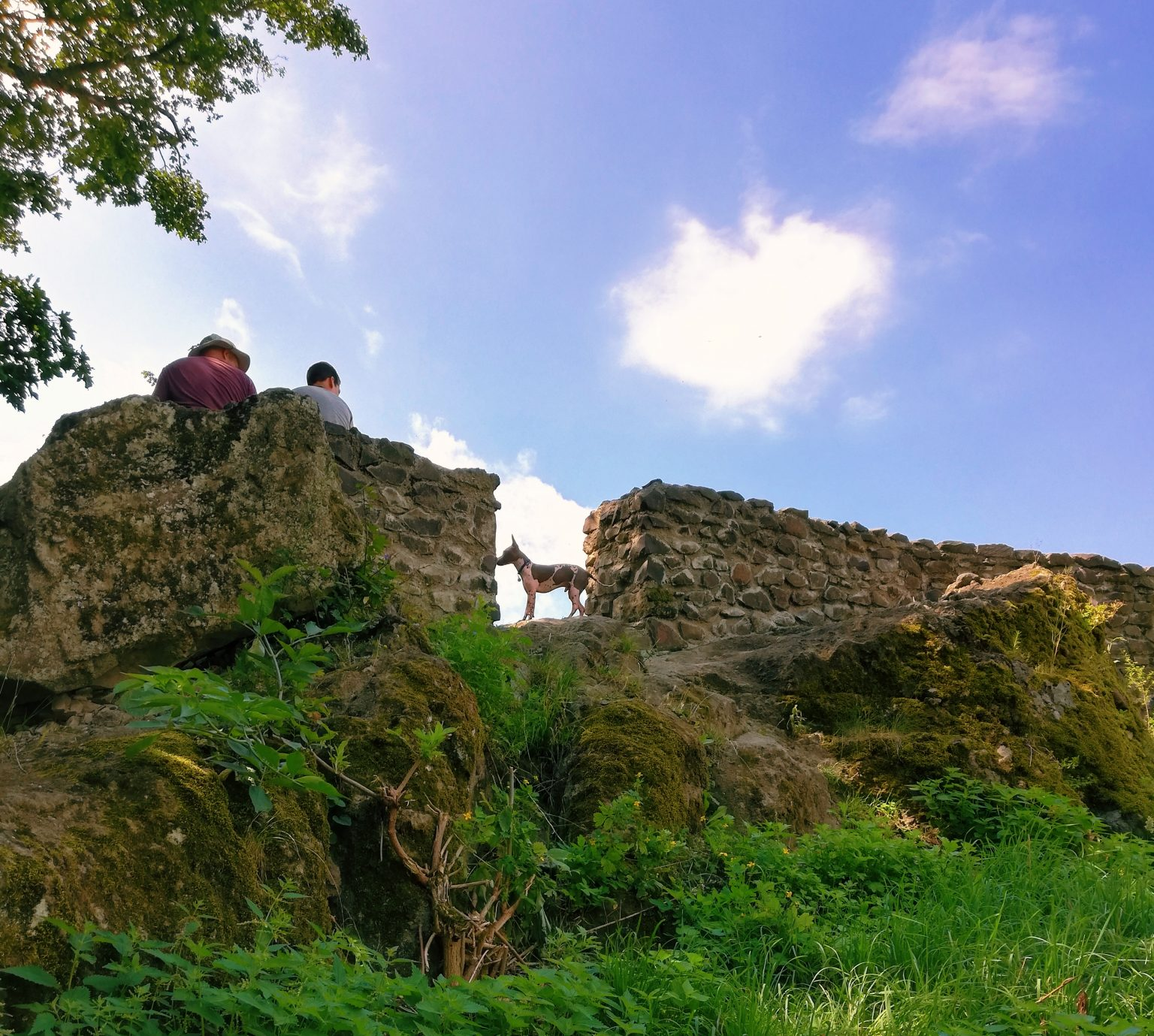 Felmásztunk a zöldellő hegyek között magasodó Drégely várához
