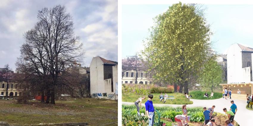 Új közösségi kert épül a VIII. kerületi Szeszgyár utcában
