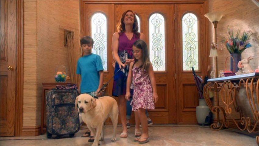 A legjobb családi filmek húsvétra: A kutya aki megmentetta a húsvétot