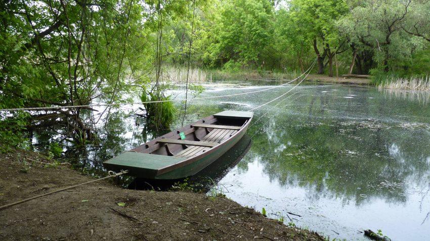 Tisza-tavi útikalauz: Vadregényes utazás a tündérek tavához