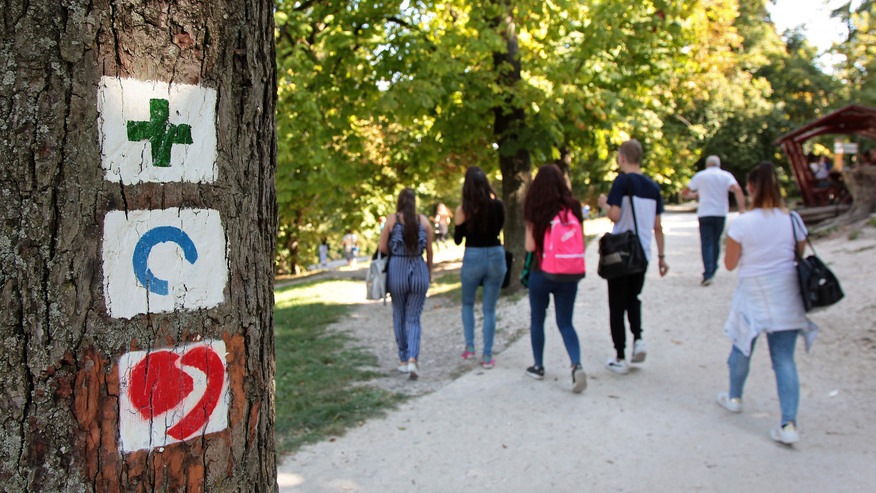 Ingyenes sétaprogram indul májusban a Normafától a Csacsi rétig