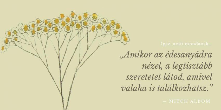 a legszebb rövid anyák napi versek