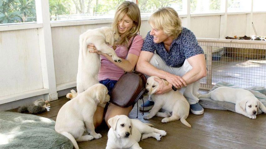 A legjobb családi filmek kutyákról: Marley és én