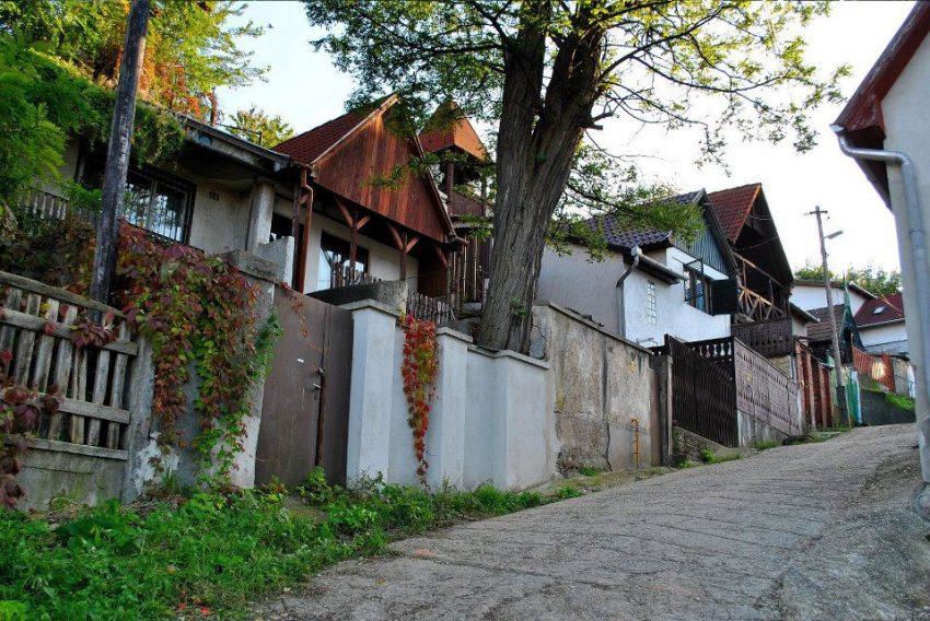 Magyarország borvidékei: Avasi pincesor