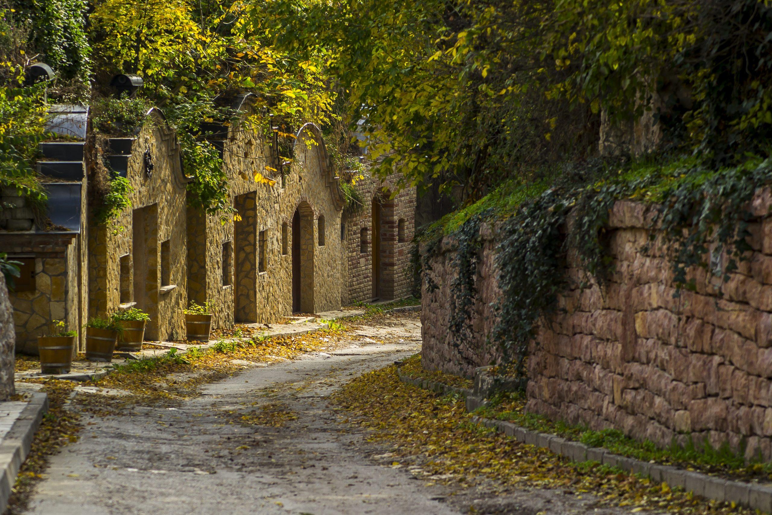 15 elragadó pincesor és pincefalu, hogy mámorosan teljen az ősz