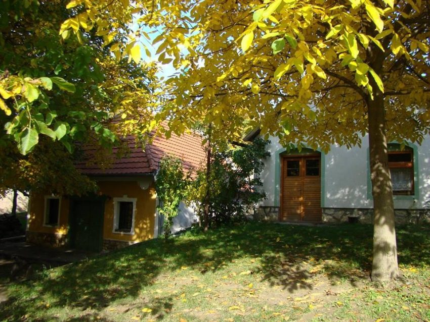 Magyarország borvidékei: Öreghegyi pincesor
